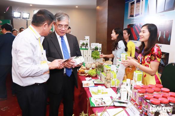 Kéo doanh nghiệp Nhật Bản vào phát triển Bắc Trung bộ - Ảnh 3.