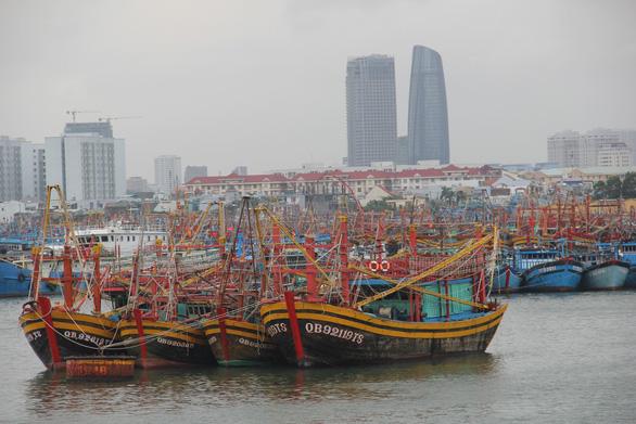 Ngư dân Đà Nẵng được hỗ trợ 90% chi phí mua bảo hiểm tàu - Ảnh 1.