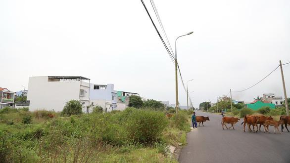 Đà Nẵng: hàng trăm người kêu cứu vì sập bẫy dự án ma - Ảnh 1.