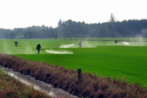 Nhiều bang ở Mỹ muốn cấm thuốc trừ sâu làm trẻ em tăng động và tự kỷ - Ảnh 1.