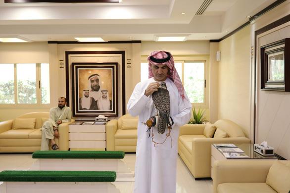 Ở nơi chim ưng là con cái trong nhà - Ảnh 14.