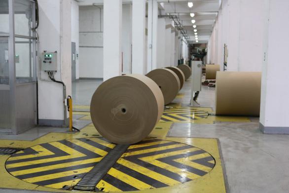 Nhà máy nhiệt điện Lee & Man sử dụng than chứ không phải nhiệt điện sinh khối - Ảnh 2.