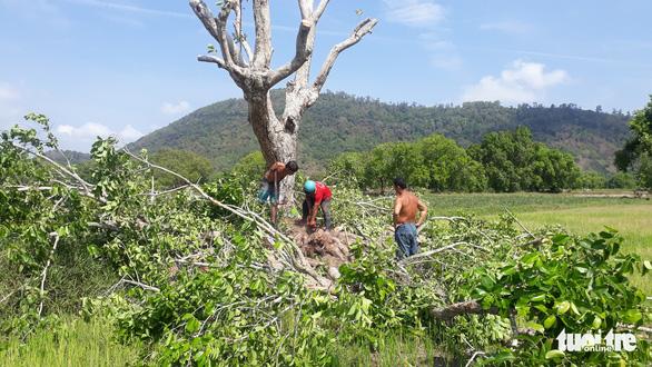 Gần 2 tháng rưỡi chưa giải quyết xong vụ tai nạn lao động làm 3 người chết ở An Giang - Ảnh 4.