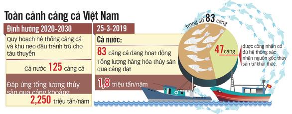 5.000 tấn cá nằm chờ xuất cảnh vì thông tư ngáng đường - Ảnh 2.