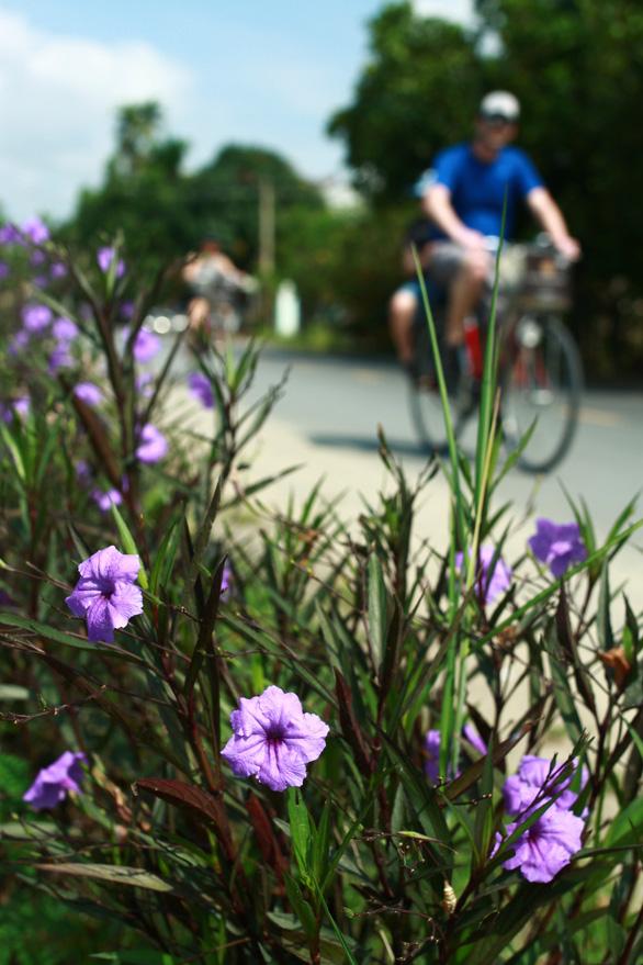 Xe đạp chia sẻ ở Hội An: Kỳ vọng lớn, tâm tư nhiều - Ảnh 4.
