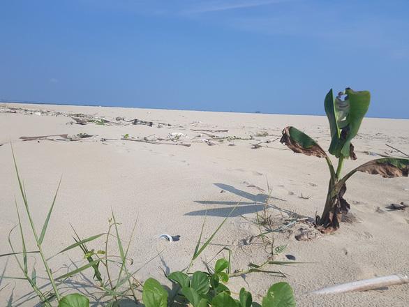 Đau đầu với đảo cát biển Cửa Đại phình 15 hecta - Ảnh 3.