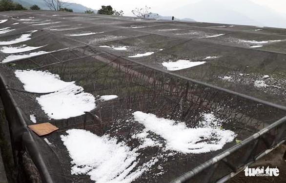 Mưa đá lớn kéo dài suốt 30 phút ở xã biên giới Nghệ An - Ảnh 1.