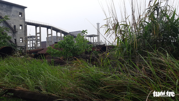 Nhà máy thép 1.000 tỉ đấu giá 100 tỉ phơi nắng mưa như vườn hoang - Ảnh 1.