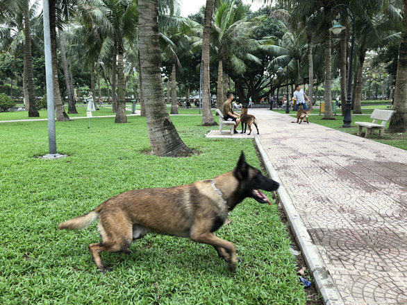 Huấn luyện chó dữ ở… công viên, người đi dạo phát khiếp - Ảnh 1.