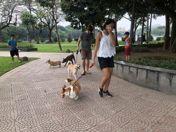 Huấn luyện chó dữ ở… công viên, người đi dạo phát khiếp - Ảnh 8.