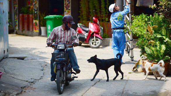 Cả xóm, cả công viên... xanh mặt với chó mặt xệ, chó becgiê Bỉ - Ảnh 2.