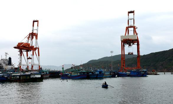 Cảng Quy Nhơn bất ngờ hoãn tổ chức Đại hội cổ đông - Ảnh 1.