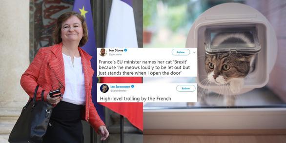 Con mèo Brexit của bà Bộ trưởng Loiseau - Ảnh 1.