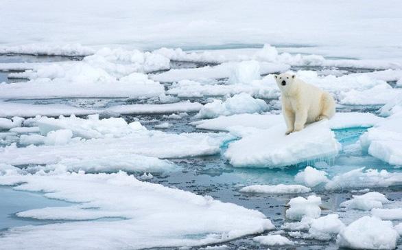 Phun nước biển tạo mây giữ băng hai cực - Ảnh 3.