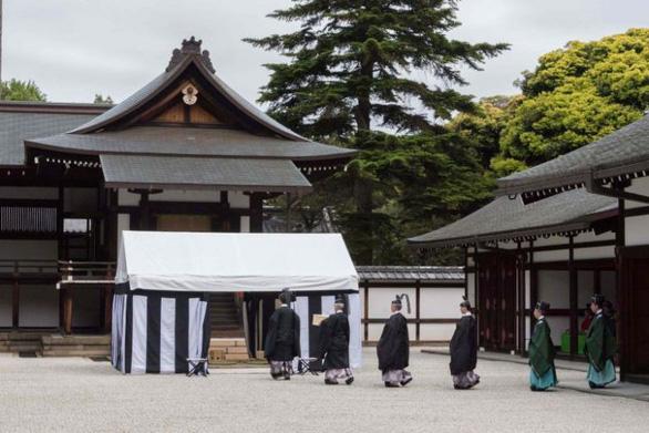 Hoàng gia Nhật đốt mai rùa tìm đất trồng lúa - Ảnh 1.
