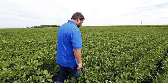 Ông Trump hứa mua lại nông sản của người Mỹ nhiều hơn Trung Quốc  - Ảnh 2.