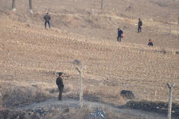 Triều Tiên thừa nhận gặp hạn hán tệ hại nhất - Ảnh 1.