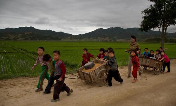 Triều Tiên thừa nhận gặp hạn hán tệ hại nhất - Ảnh 2.