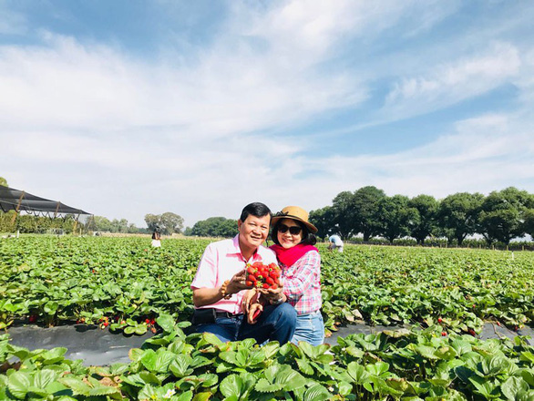 Du Lịch Việt ưu đãi hè đặc biệt đến 5 tỉ đồng - Ảnh 3.