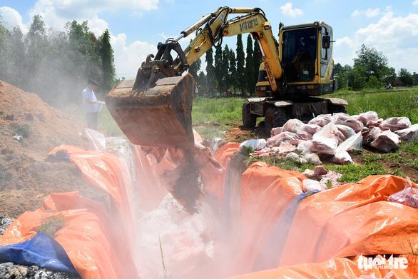 Tiêu hủy hơn 4 tấn thịt bị dịch tả heo châu Phi tại một kho lạnh - Ảnh 6.