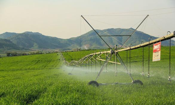 Ứng dụng công nghệ cao, nền nông nghiệp Việt sẽ cất cánh - Ảnh 2.