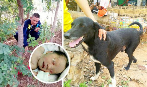 Chú chó 3 chân cứu sống bé trai sơ sinh bị 'mẹ nhí' 15 tuổi chôn sống - Ảnh 1.