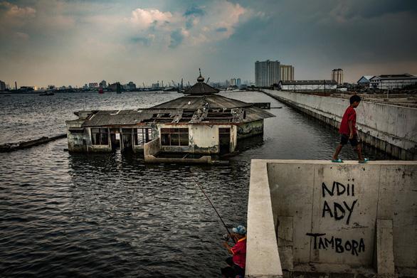 Indonesia dời đô không chỉ vì đông dân, kẹt xe mà còn do sẽ bị chìm 95% - Ảnh 1.