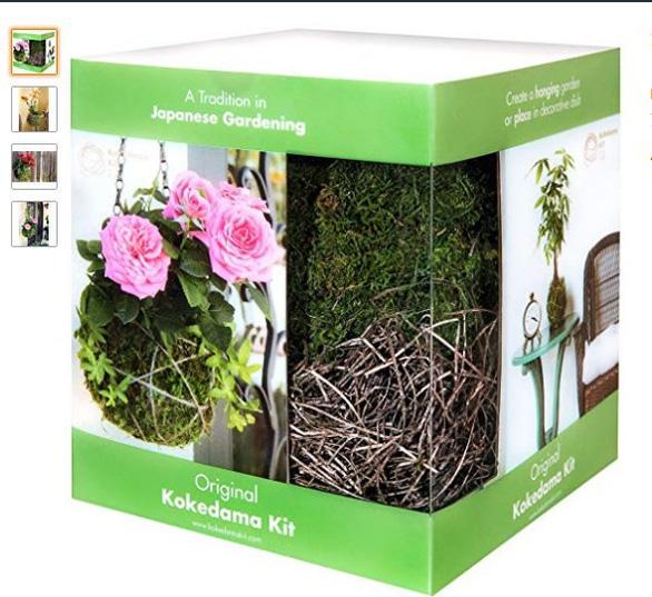 Tô điểm không gian sống với nghệ thuật trồng cây Kokedama của người Nhật - Ảnh 2.