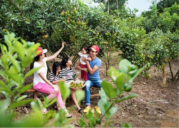 Vườn cây ăn trái 25 hecta giữa lòng Madagui - Ảnh 2.