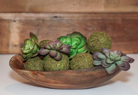 Tô điểm không gian sống với nghệ thuật trồng cây Kokedama của người Nhật - Ảnh 7.