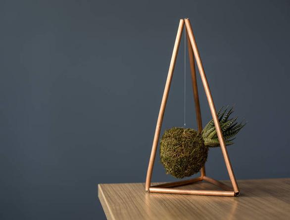 Tô điểm không gian sống với nghệ thuật trồng cây Kokedama của người Nhật - Ảnh 8.