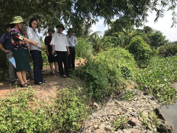 Đê bao sông Sài Gòn sạt lở vì không có đơn vị quản lý, duy tu - Ảnh 2.
