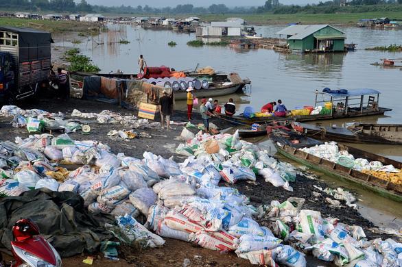 Ngư dân làng bè La Ngà thất thần bán tháo cả ngàn tấn cá lăng, leo... 2.000 đồng/kg - Ảnh 2.