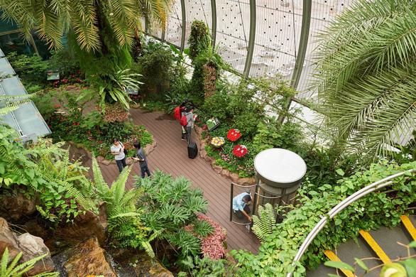 Singahura - Vui hè Singapore: Trải nghiệm mùa hè cho cả nhà - Ảnh 3.