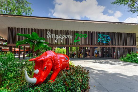 Singahura - Vui hè Singapore: Trải nghiệm mùa hè cho cả nhà - Ảnh 4.