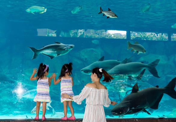 Singahura - Vui hè Singapore: Trải nghiệm mùa hè cho cả nhà - Ảnh 5.