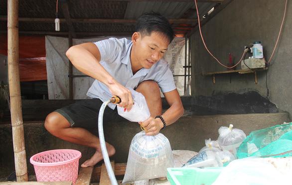 Những người trẻ của đảo Lý Sơn - Kỳ 1: Chàng kỹ sư đi bán cá - Ảnh 2.