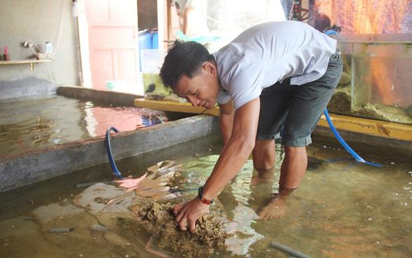 Những người trẻ của đảo Lý Sơn - Kỳ 1: Chàng kỹ sư đi bán cá - Ảnh 3.