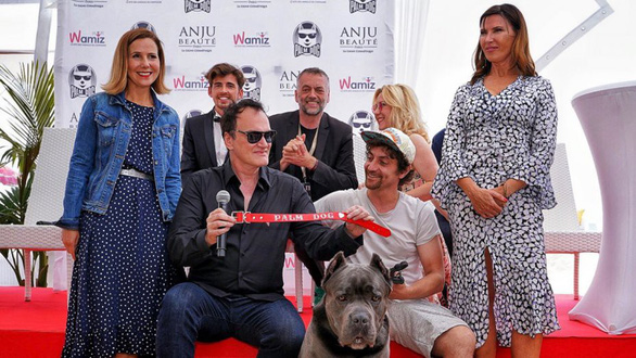 Cô chó pitbull trong phim của Quentin Tarantino đoạt Cành cọ vàng - Ảnh 3.