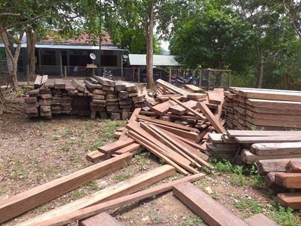 4,6m3 gỗ được giữ trái phép trong trụ sở UBND xã - Ảnh 1.