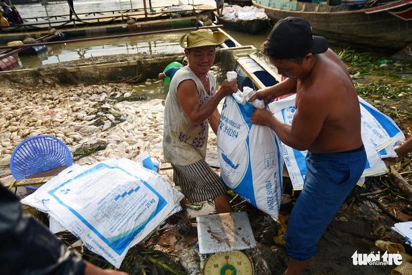 Cá bè chết tại La Ngà: Thông số ô nhiễm hữu cơ vượt chuẩn nhiều lần - Ảnh 1.