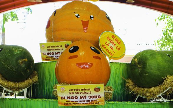 Lễ hội trái cây lần thứ 15 với chuỗi hoạt động đậm chất Nam Bộ - Ảnh 5.