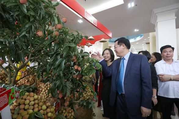 Lần đầu tiên vải thiều Bắc Giang có sản phẩm hữu cơ - Ảnh 2.