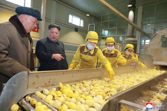 Liên Hiệp Quốc nói Triều Tiên giảm khẩu phần lương thực người dân - Ảnh 1.