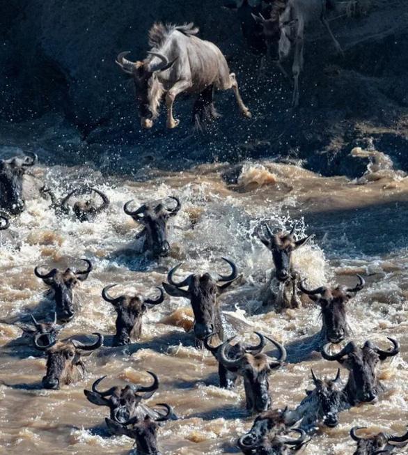 Nghẹt thở ảnh đẹp thiên nhiên từ cuộc thi National Geographic Travel - Ảnh 2.