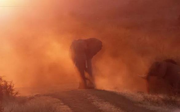 Nghẹt thở ảnh đẹp thiên nhiên từ cuộc thi National Geographic Travel - Ảnh 7.