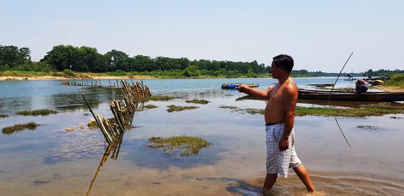 Dân cắm cọc tre, dựng rào tre ngăn sông chống cát tặc - Ảnh 2.