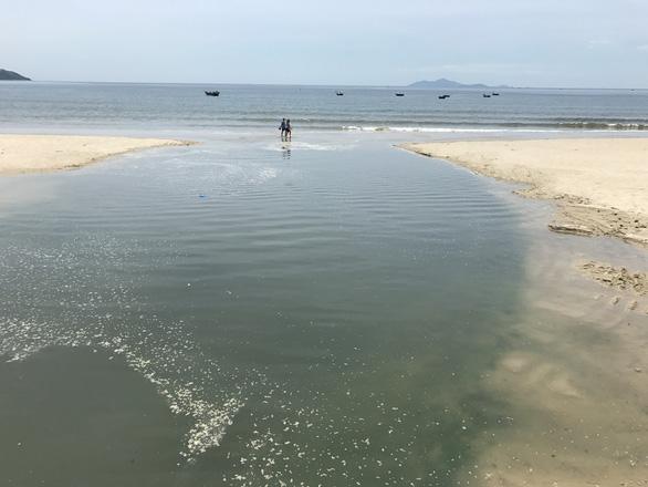 Đà Nẵng xử phạt 9 khách sạn ven biển vi phạm về môi trường - Ảnh 1.