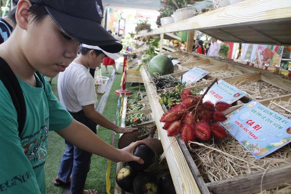 Ngắm bí ngô khổng lồ 100kg, dừa khủng 15kg... tại Suối Tiên - Ảnh 3.