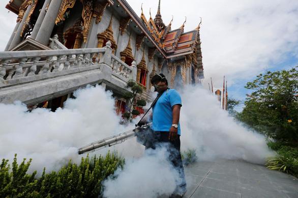 Thái Lan phun thuốc diệt muỗi để kiểm soát dịch sốt Chikungunya - Ảnh 1.